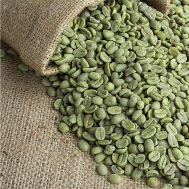 cafe verde 380x380